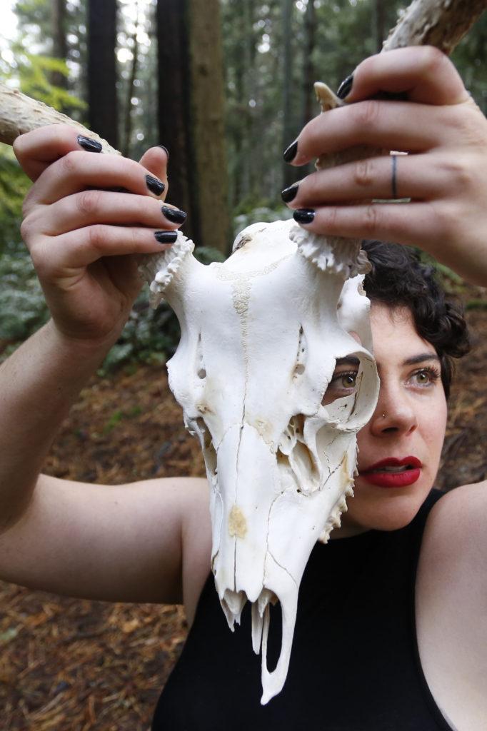 deer skull photographer